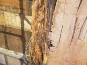 壁のひび割れ目より水侵入
