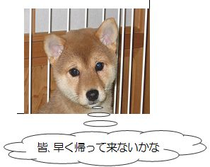 image2 発行第2号