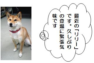 image1 発行第17号