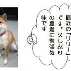 平成21年11月発行第17号