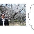 平成21年5月発行第11号
