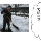平成21年2月発行第8号
